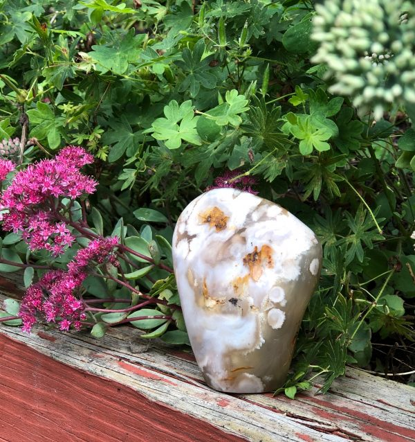 Flower Agate Free Form Display